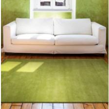 Home Comfort Green Rug