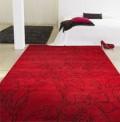 Crateva Red Rug
