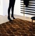 Sur Pointe Brown rug